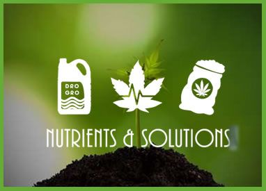 nutrients and solutions
