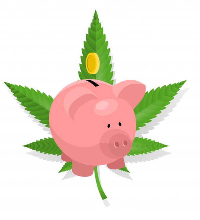 cannabis seeds affiliate program
