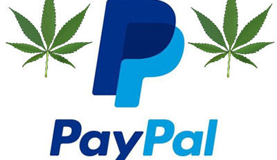 paypal and cannabis seeds